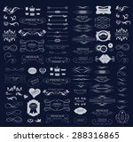 set of calligraphic elements... | Shutterstock .eps vector #288316865