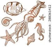 hand drawn sea life set. shells ... | Shutterstock .eps vector #288361412
