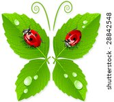 vector butterfly. | Shutterstock .eps vector #28842548