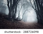 trail through a mysterious dark ... | Shutterstock . vector #288726098
