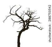 Curved Silhouette Dry Tree...