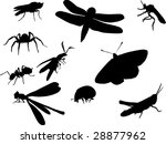 illustration with insect... | Shutterstock . vector #28877962