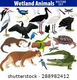 Vector Set Of Wetland Animals