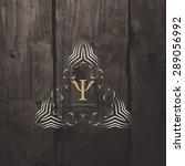 vintage frame for luxury logos  ... | Shutterstock .eps vector #289056992