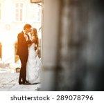 lovely wedding couple kissing... | Shutterstock . vector #289078796