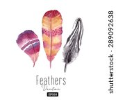 watercolor feather set. hand... | Shutterstock .eps vector #289092638