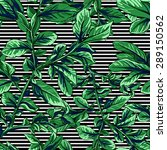 seamless pattern with green... | Shutterstock .eps vector #289150562