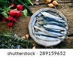fresh sardines. fish with... | Shutterstock . vector #289159652
