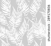 white fern leaves on a gray...   Shutterstock .eps vector #289170836