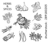 herbs and spices | Shutterstock .eps vector #289183205
