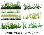 grass pattern | Shutterstock .eps vector #28922779