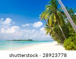 Small photo of Tropical Beach with coconut palm trees and turquoise ocean (more tropical beaches in my portfolio)