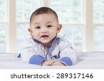 portrait of male baby with a... | Shutterstock . vector #289317146