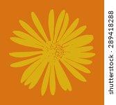 vector yellow flower on an... | Shutterstock .eps vector #289418288