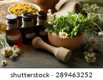 Herbs  Berries And Flowers Wit...