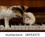 Kitten With A Mouse On The...