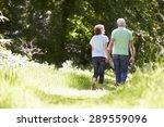 rear view of senior couple... | Shutterstock . vector #289559096