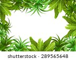 tropical jungle. frame | Shutterstock .eps vector #289565648