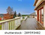 beautiful large backyard with... | Shutterstock . vector #289593482