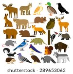 vector set of cartoon forest... | Shutterstock .eps vector #289653062