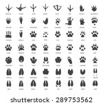 vector set of animal tracks | Shutterstock .eps vector #289753562