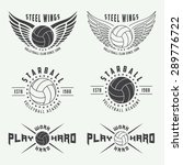 set of vintage volleyball... | Shutterstock .eps vector #289776722