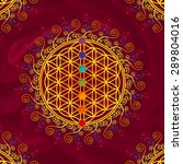 flower of life  sacred geometry ...   Shutterstock . vector #289804016