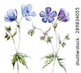 Watercolor Delicate Blue...