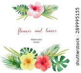 watercolor bouquet of hibiscus... | Shutterstock .eps vector #289995155