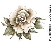 Greeting Card With Vintage Rose....