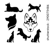 husky icons and silhouettes....   Shutterstock .eps vector #290075486