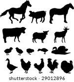 farm animals 2   vector | Shutterstock .eps vector #29012896