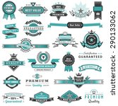a big set of high detail design ... | Shutterstock .eps vector #290133062