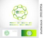 vector company logo icon... | Shutterstock .eps vector #290139956