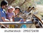 the living desert zoo  palm...   Shutterstock . vector #290272658