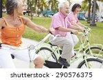 group of senior friends having...   Shutterstock . vector #290576375