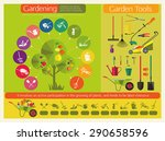 organic cultivation of fruit... | Shutterstock .eps vector #290658596