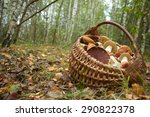 mushrooms in the basket | Shutterstock . vector #290822378