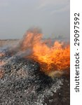 fire line moving forwards  ... | Shutterstock . vector #29097592