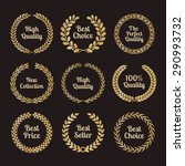 premium quality laurel wreaths... | Shutterstock . vector #290993732