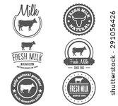 set of vintage labels  logo ... | Shutterstock .eps vector #291056426