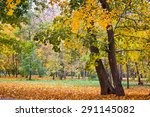 Beautiful Autumn Park With...
