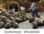 tequila  jalisco  mexico  ... | Shutterstock . vector #291160322