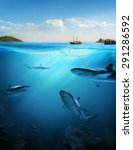 design template with underwater ... | Shutterstock . vector #291286592