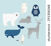 Vector Set Arctic And Antarcti...