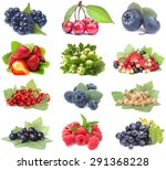 berries fruit | Shutterstock . vector #291368228