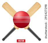 vector illustration of cricket... | Shutterstock .eps vector #291427298