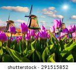 The Famous Dutch Windmills....