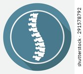 icon spine diagnostics on white ... | Shutterstock .eps vector #291578792