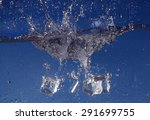 ice cubes splashing into water  ... | Shutterstock . vector #291699755